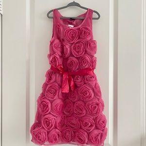 Gapkids Rose dress BNWT size M (8)